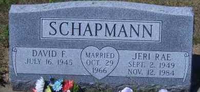 SCHAPMANN, DAVID F - Antelope County, Nebraska | DAVID F SCHAPMANN - Nebraska Gravestone Photos