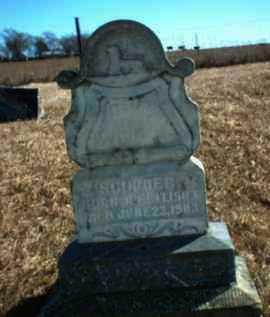 SCHOBER, BABY - Antelope County, Nebraska | BABY SCHOBER - Nebraska Gravestone Photos