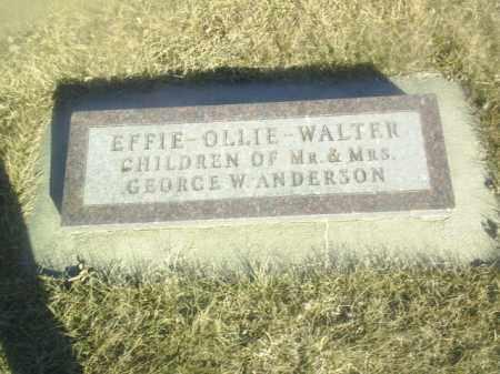 ANDERSON, OLLIE - Boone County, Nebraska | OLLIE ANDERSON - Nebraska Gravestone Photos