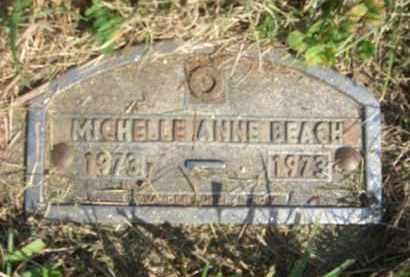 BEACH, MICHELLE ANNE - Boone County, Nebraska | MICHELLE ANNE BEACH - Nebraska Gravestone Photos