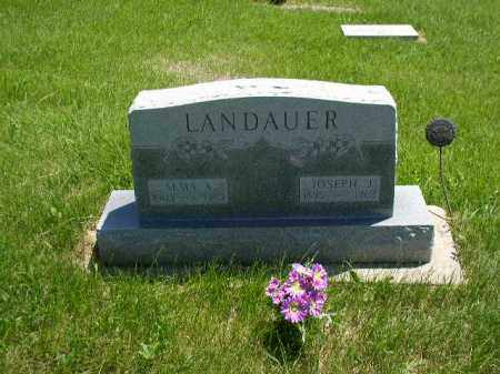 ACKERMAN LANDAUER, ALMA ANNA - Boone County, Nebraska | ALMA ANNA ACKERMAN LANDAUER - Nebraska Gravestone Photos