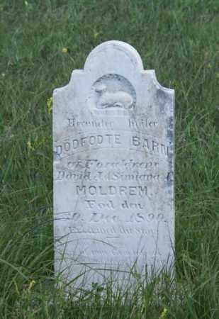 MOLDREM, STILLBORN - Boone County, Nebraska   STILLBORN MOLDREM - Nebraska Gravestone Photos