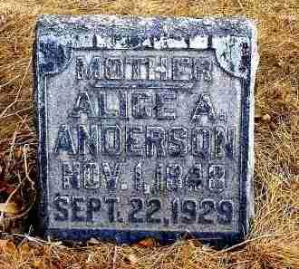 ANDERSON, ALICE A. - Box Butte County, Nebraska | ALICE A. ANDERSON - Nebraska Gravestone Photos