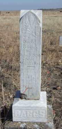 BAGGS, DAISY - Box Butte County, Nebraska | DAISY BAGGS - Nebraska Gravestone Photos