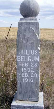 BELGUM, JULIUS - Box Butte County, Nebraska | JULIUS BELGUM - Nebraska Gravestone Photos