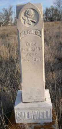 CALDWELL, EARL C. - Box Butte County, Nebraska | EARL C. CALDWELL - Nebraska Gravestone Photos