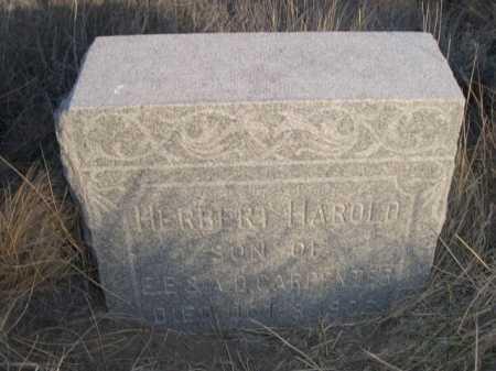CARPENTER, HERBERT HAROLD - Box Butte County, Nebraska | HERBERT HAROLD CARPENTER - Nebraska Gravestone Photos