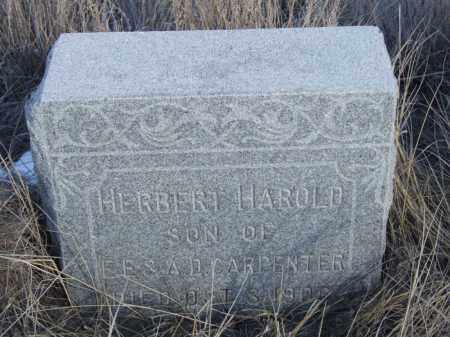 CARPENTER, HERBERT HAROLD - Box Butte County, Nebraska   HERBERT HAROLD CARPENTER - Nebraska Gravestone Photos
