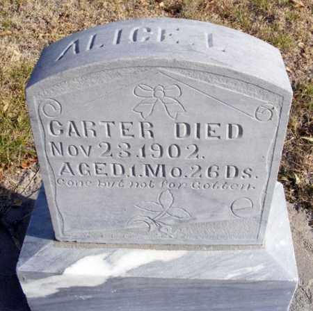 CARTER, ALICE L. - Box Butte County, Nebraska   ALICE L. CARTER - Nebraska Gravestone Photos