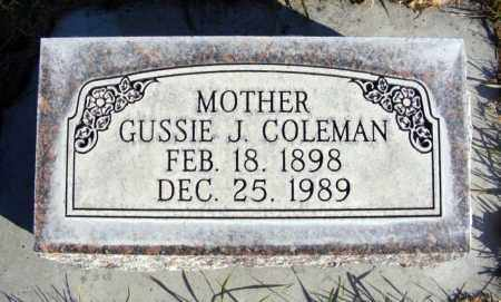 HICKEY COLEMAN, GUSSIE J. - Box Butte County, Nebraska   GUSSIE J. HICKEY COLEMAN - Nebraska Gravestone Photos