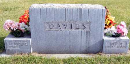 JOHNSON DAVIES, LUCINDA - Box Butte County, Nebraska | LUCINDA JOHNSON DAVIES - Nebraska Gravestone Photos