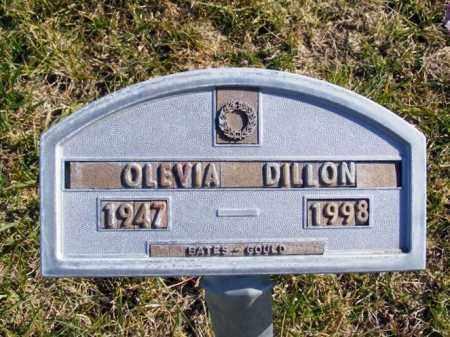 DILLON, OLEVIA - Box Butte County, Nebraska | OLEVIA DILLON - Nebraska Gravestone Photos