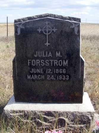 FORSSTROM, JULIA M. - Box Butte County, Nebraska | JULIA M. FORSSTROM - Nebraska Gravestone Photos