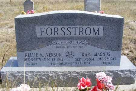IVERSON FORSSTROM, NELLIE M. - Box Butte County, Nebraska | NELLIE M. IVERSON FORSSTROM - Nebraska Gravestone Photos