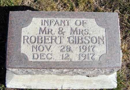 GIBSON, INFANT - Box Butte County, Nebraska | INFANT GIBSON - Nebraska Gravestone Photos