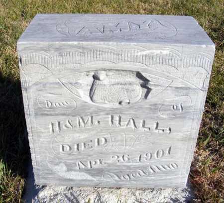 HALL, AMY - Box Butte County, Nebraska | AMY HALL - Nebraska Gravestone Photos