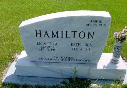 HAMILTON, ESTEL BEN - Box Butte County, Nebraska | ESTEL BEN HAMILTON - Nebraska Gravestone Photos