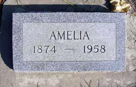 HUCKE, AMELIA - Box Butte County, Nebraska | AMELIA HUCKE - Nebraska Gravestone Photos
