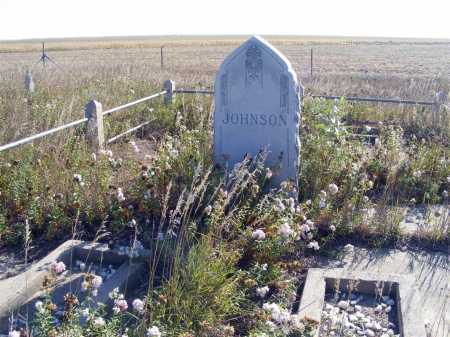 JOHNSON, FAMILY - Box Butte County, Nebraska | FAMILY JOHNSON - Nebraska Gravestone Photos