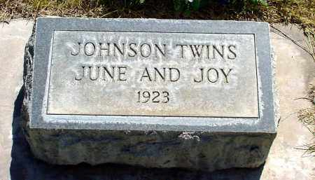 JOHNSON, JUNE - Box Butte County, Nebraska | JUNE JOHNSON - Nebraska Gravestone Photos