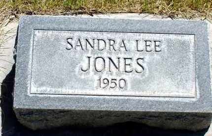 JONES, SANDRA LEE - Box Butte County, Nebraska   SANDRA LEE JONES - Nebraska Gravestone Photos