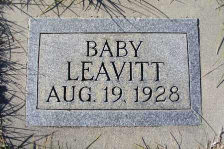 LEAVITT, BABY - Box Butte County, Nebraska | BABY LEAVITT - Nebraska Gravestone Photos