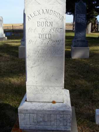 MOELLER, ALEXANDRINA - Box Butte County, Nebraska | ALEXANDRINA MOELLER - Nebraska Gravestone Photos