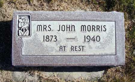 MORRIS, LAURA AMANDA - Box Butte County, Nebraska | LAURA AMANDA MORRIS - Nebraska Gravestone Photos