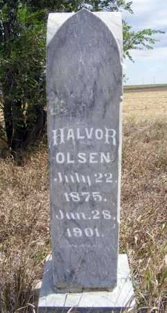 OLSEN, HALVOR - Box Butte County, Nebraska | HALVOR OLSEN - Nebraska Gravestone Photos