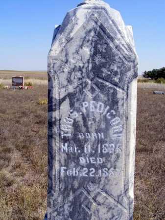 PEDICORD, THOMAS - Box Butte County, Nebraska | THOMAS PEDICORD - Nebraska Gravestone Photos