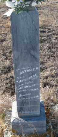 POSVARE, ANTONIE  R. - Box Butte County, Nebraska   ANTONIE  R. POSVARE - Nebraska Gravestone Photos