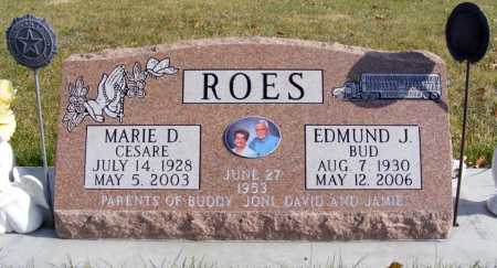 CESARE ROES, MARIE D. - Box Butte County, Nebraska | MARIE D. CESARE ROES - Nebraska Gravestone Photos