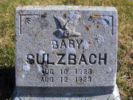 SULZBACH, BABY BOY - Box Butte County, Nebraska | BABY BOY SULZBACH - Nebraska Gravestone Photos