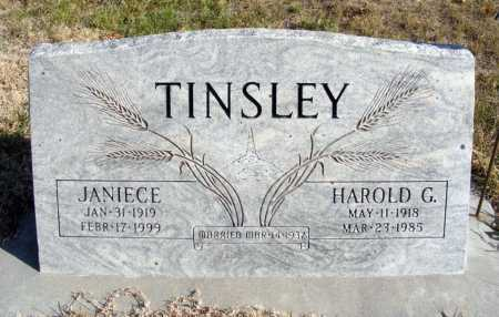 TINSLEY, JANIECE - Box Butte County, Nebraska | JANIECE TINSLEY - Nebraska Gravestone Photos