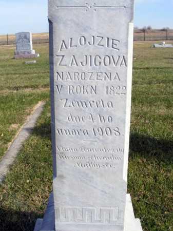 ZAJICOVA, ALOJZIE - Box Butte County, Nebraska | ALOJZIE ZAJICOVA - Nebraska Gravestone Photos