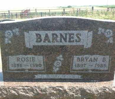 BARNES, ROSIE - Boyd County, Nebraska | ROSIE BARNES - Nebraska Gravestone Photos