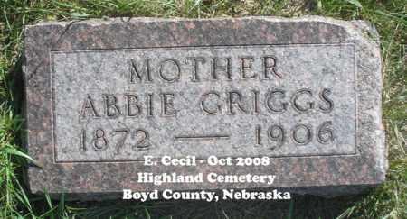 GRIGGS, ABBIE - Boyd County, Nebraska | ABBIE GRIGGS - Nebraska Gravestone Photos
