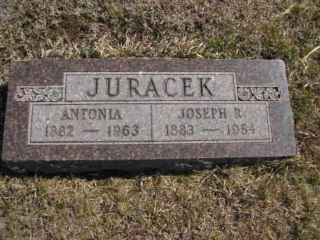 JURACEK, ANTONIA - Boyd County, Nebraska | ANTONIA JURACEK - Nebraska Gravestone Photos