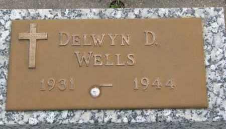 WELLS, DELWYN D. - Boyd County, Nebraska   DELWYN D. WELLS - Nebraska Gravestone Photos