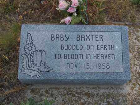 BAXTER, BABY - Brown County, Nebraska | BABY BAXTER - Nebraska Gravestone Photos