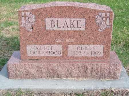 BLAKE, ALICE - Brown County, Nebraska | ALICE BLAKE - Nebraska Gravestone Photos