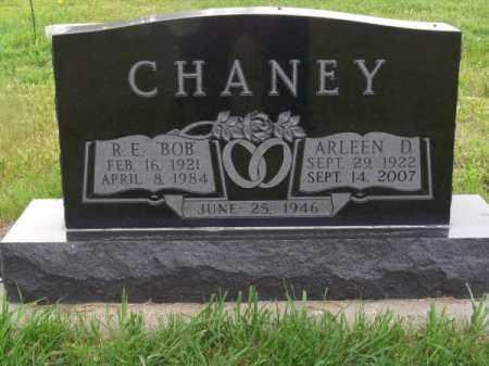 CHANEY, ARLEEN D. - Brown County, Nebraska | ARLEEN D. CHANEY - Nebraska Gravestone Photos