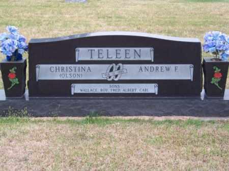 TELEEN, CHRISTINA - Brown County, Nebraska | CHRISTINA TELEEN - Nebraska Gravestone Photos