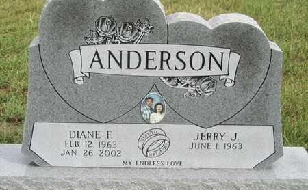 ANDERS ON, DIANE - Buffalo County, Nebraska | DIANE ANDERS ON - Nebraska Gravestone Photos