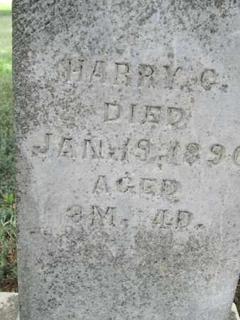 ANDERSON, HARRY - Buffalo County, Nebraska | HARRY ANDERSON - Nebraska Gravestone Photos