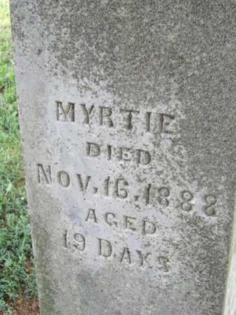 ANDERSON, MYRTIE - Buffalo County, Nebraska | MYRTIE ANDERSON - Nebraska Gravestone Photos
