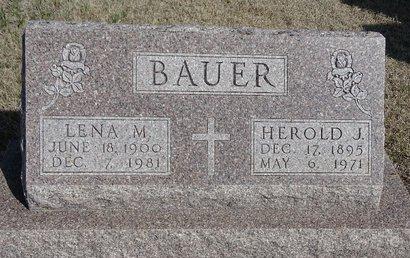 BAUER, HEROLD J. - Buffalo County, Nebraska | HEROLD J. BAUER - Nebraska Gravestone Photos