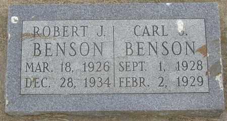 BENSON, CARL - Buffalo County, Nebraska   CARL BENSON - Nebraska Gravestone Photos