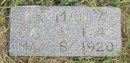 FIEBIG, HERMAN - Buffalo County, Nebraska | HERMAN FIEBIG - Nebraska Gravestone Photos