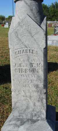 GIBBONS, CHARLES - Buffalo County, Nebraska | CHARLES GIBBONS - Nebraska Gravestone Photos